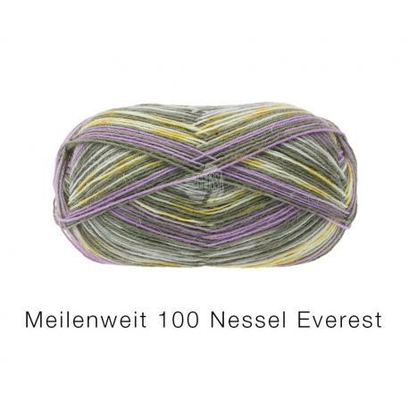 Lana Grossa Meilenweit 100 Nessel Everest 5132