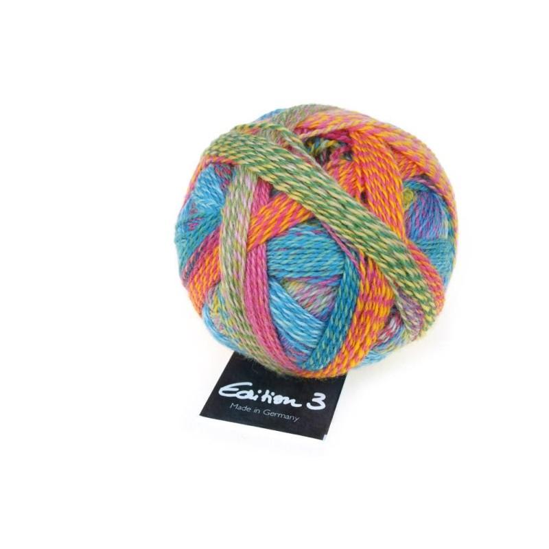 Schoppel Wolle Edition 3.0 2296 Englischer Garten