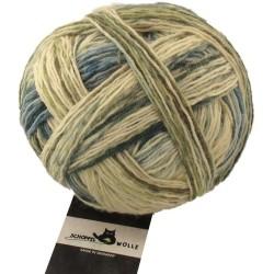 Schoppel Wolle Wunderkleckse 2132 Rosenholz